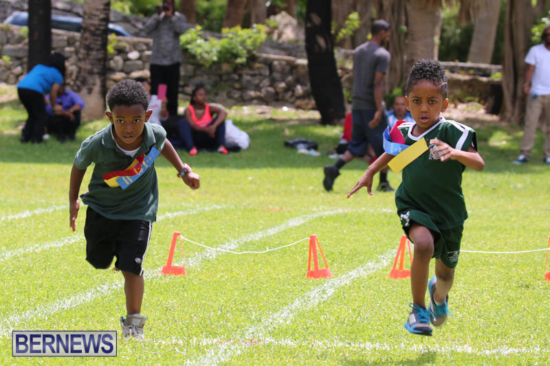 Devonshire-Preschool-Sports-Bermuda-May-22-2015-237
