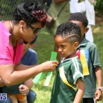 Devonshire Preschool Sports Bermuda, May 22 2015-239