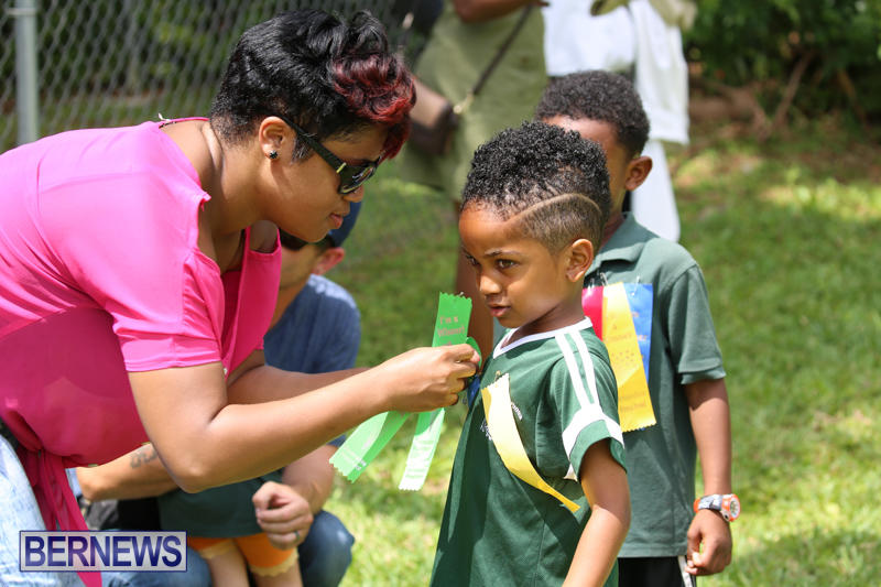 Devonshire-Preschool-Sports-Bermuda-May-22-2015-239