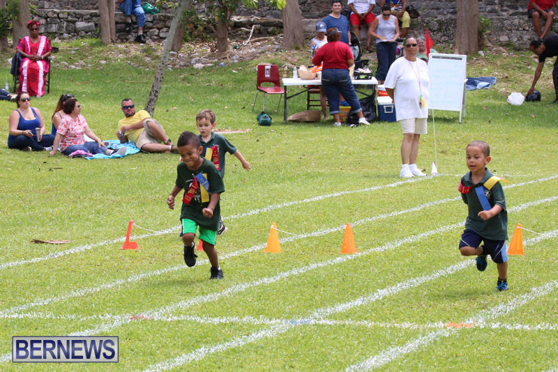Devonshire-Preschool-Sports-Bermuda-May-22-2015-241