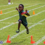 Devonshire Preschool Sports Bermuda, May 22 2015-242