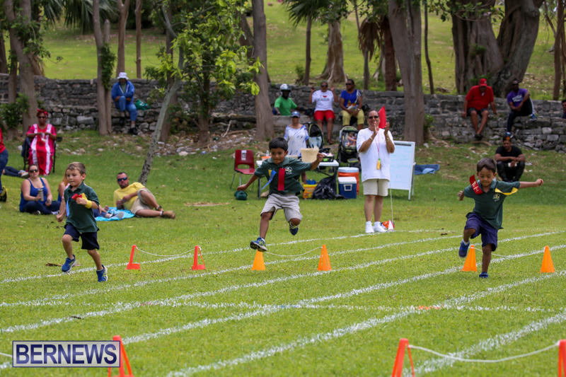 Devonshire-Preschool-Sports-Bermuda-May-22-2015-244
