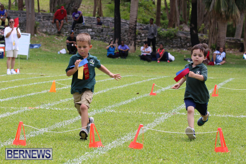 Devonshire-Preschool-Sports-Bermuda-May-22-2015-245