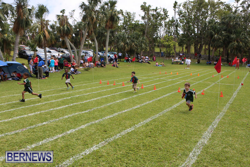 Devonshire-Preschool-Sports-Bermuda-May-22-2015-246