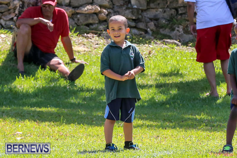 Devonshire-Preschool-Sports-Bermuda-May-22-2015-26