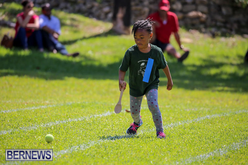 Devonshire-Preschool-Sports-Bermuda-May-22-2015-34