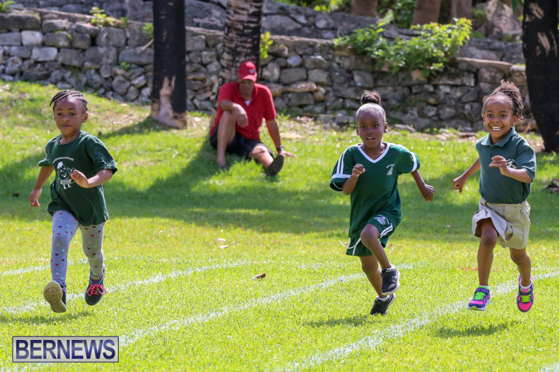Devonshire-Preschool-Sports-Bermuda-May-22-2015-4