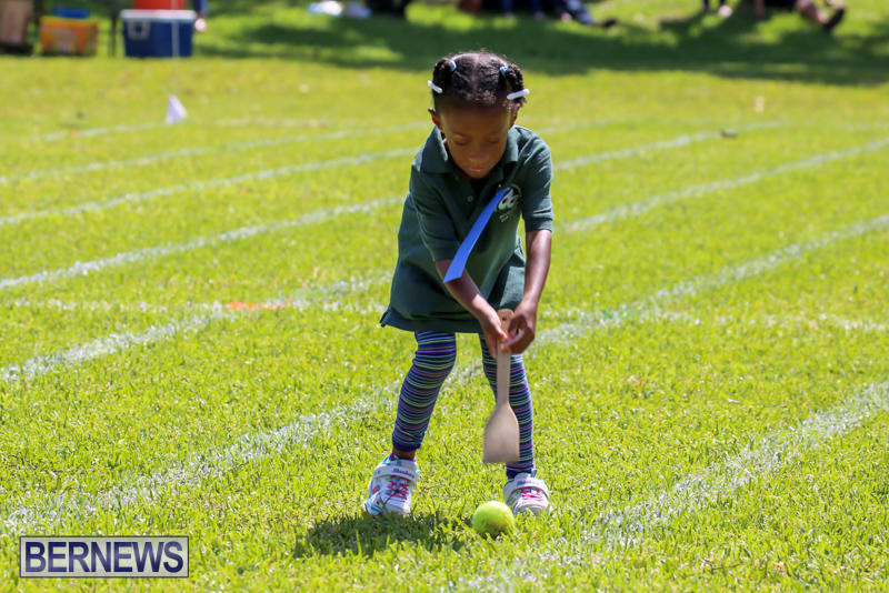 Devonshire-Preschool-Sports-Bermuda-May-22-2015-40