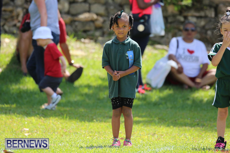 Devonshire-Preschool-Sports-Bermuda-May-22-2015-42