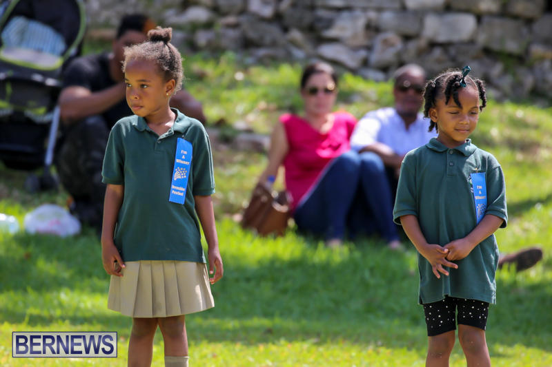 Devonshire-Preschool-Sports-Bermuda-May-22-2015-46