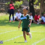 Devonshire Preschool Sports Bermuda, May 22 2015-52