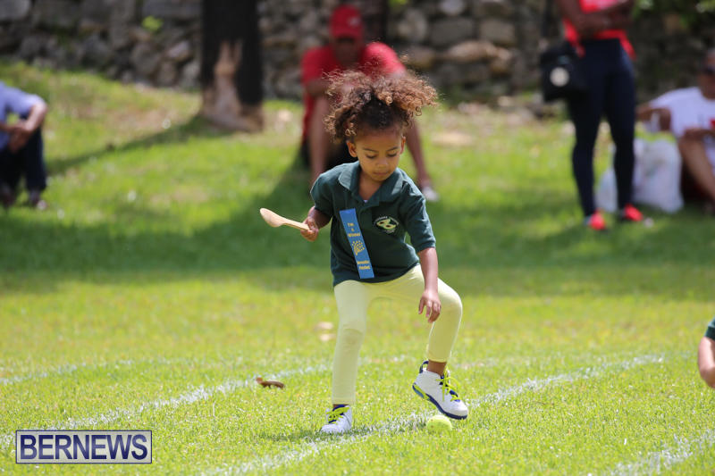 Devonshire-Preschool-Sports-Bermuda-May-22-2015-60