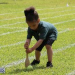 Devonshire Preschool Sports Bermuda, May 22 2015-67