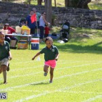 Devonshire Preschool Sports Bermuda, May 22 2015-7