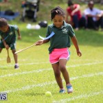 Devonshire Preschool Sports Bermuda, May 22 2015-82