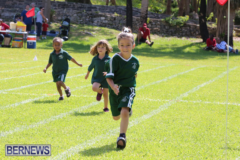 Devonshire-Preschool-Sports-Bermuda-May-22-2015-9