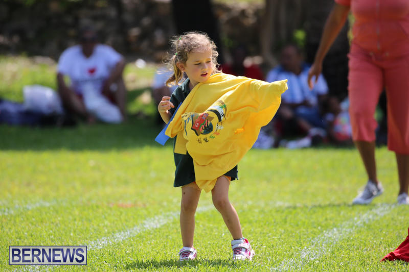 Devonshire-Preschool-Sports-Bermuda-May-22-2015-94