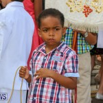 Festa Santo Cristo Segundo Dia Bermuda, May 10 2015-10