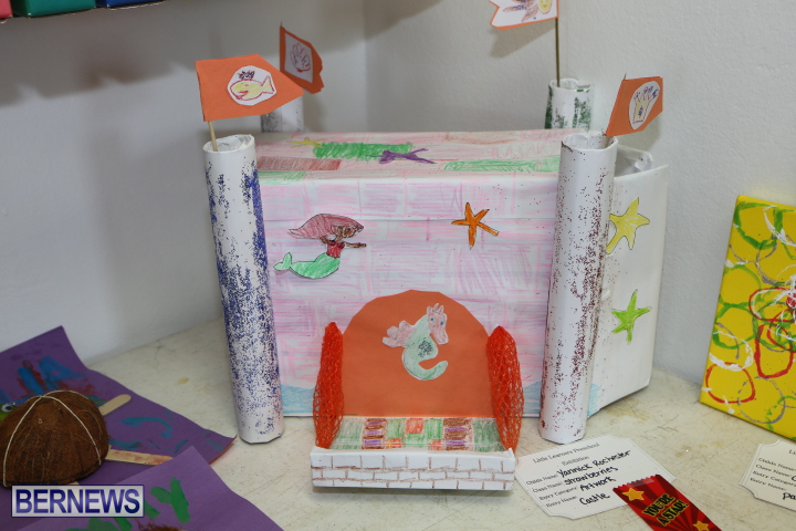 Little-Learners-AG-Show-2015-23