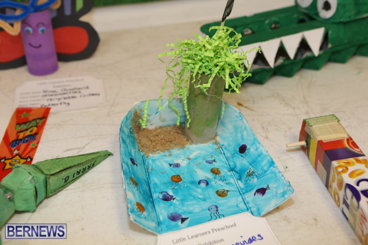 Little-Learners-AG-Show-2015-36