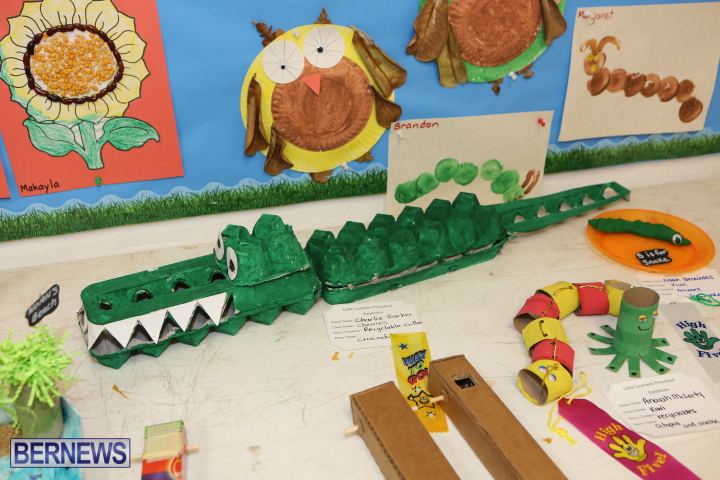 Little-Learners-AG-Show-2015-37