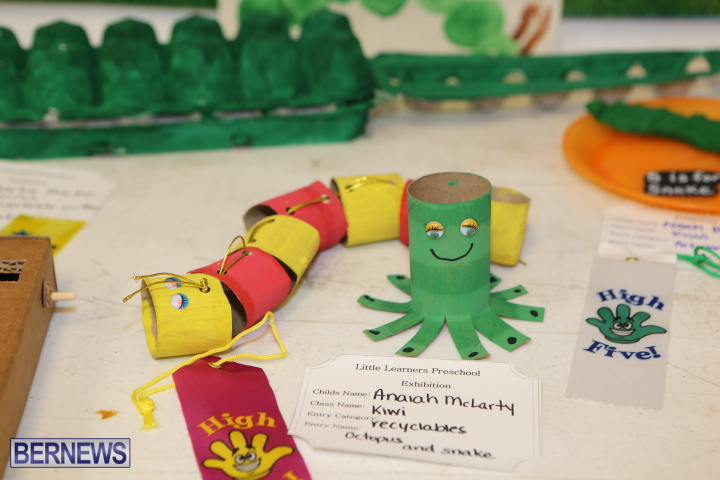 Little-Learners-AG-Show-2015-38