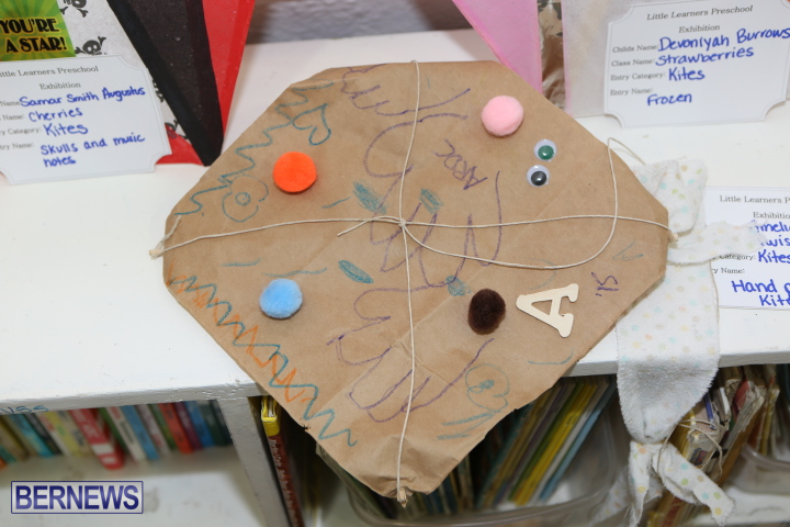 Little-Learners-AG-Show-2015-50