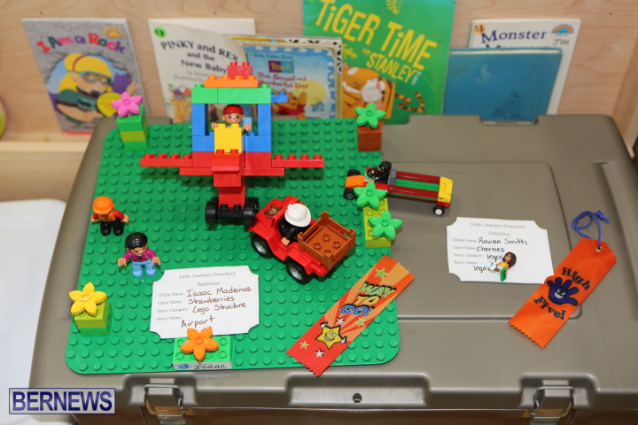 Little-Learners-AG-Show-2015-54