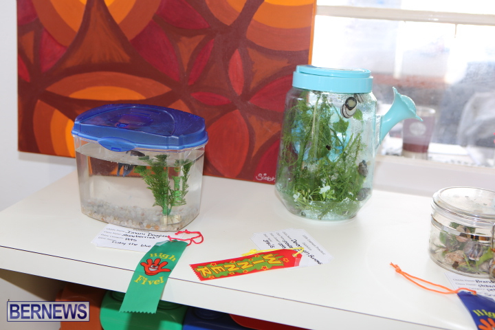 Little-Learners-AG-Show-2015-7