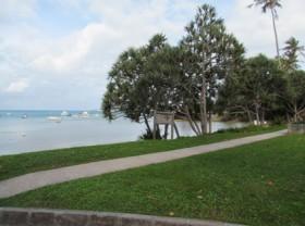 Mangrove Bay2
