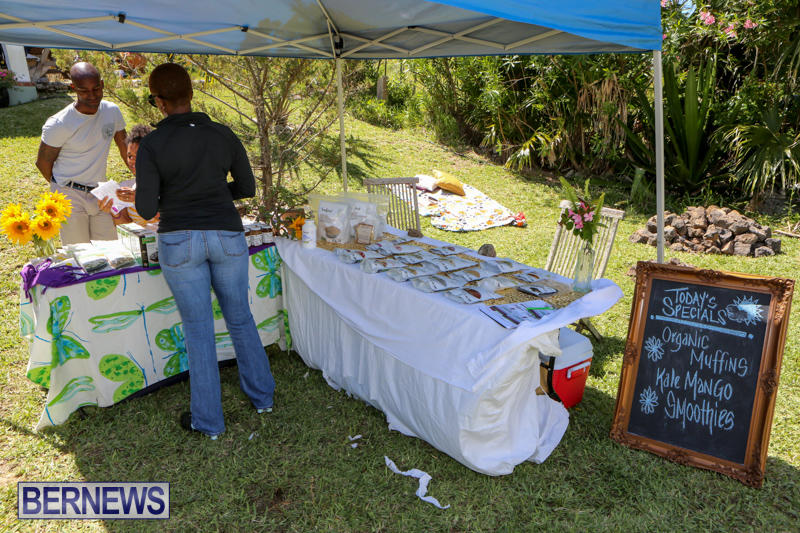 OM-Fest-Bermuda-May-3-2015-15