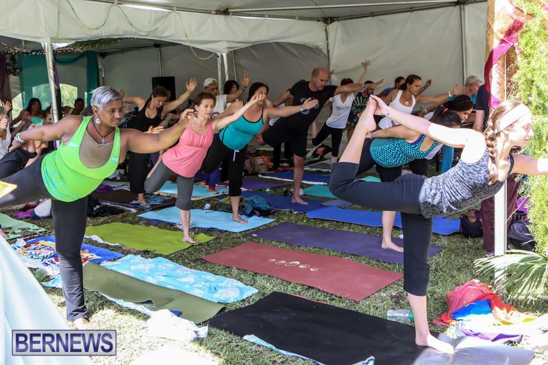 OM-Fest-Bermuda-May-3-2015-26