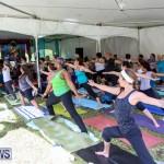 OM Fest Bermuda, May 3 2015-31