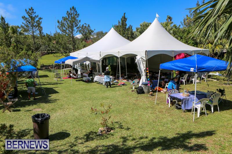 OM-Fest-Bermuda-May-3-2015-47