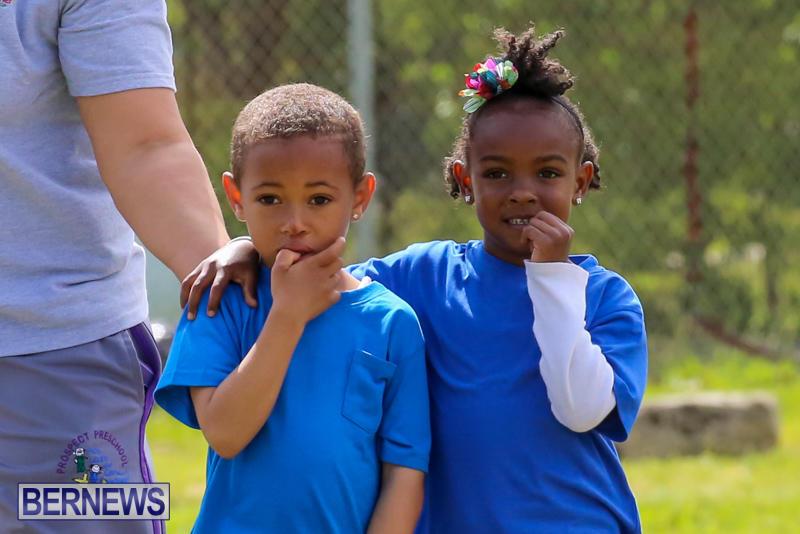Prospect-Preschool-Sports-Day-Bermuda-May-1-2015-19