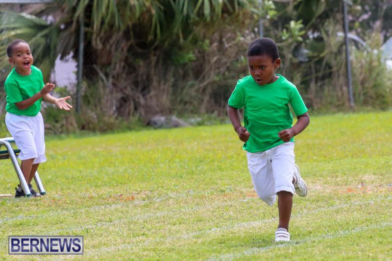 Prospect-Preschool-Sports-Day-Bermuda-May-1-2015-33