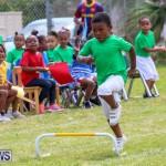 Prospect Preschool Sports Day Bermuda, May 1 2015-34