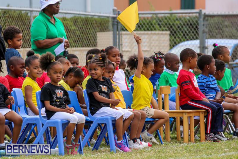 Prospect-Preschool-Sports-Day-Bermuda-May-1-2015-51