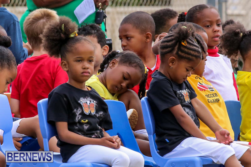 Prospect-Preschool-Sports-Day-Bermuda-May-1-2015-52