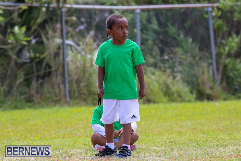 Prospect-Preschool-Sports-Day-Bermuda-May-1-2015-61