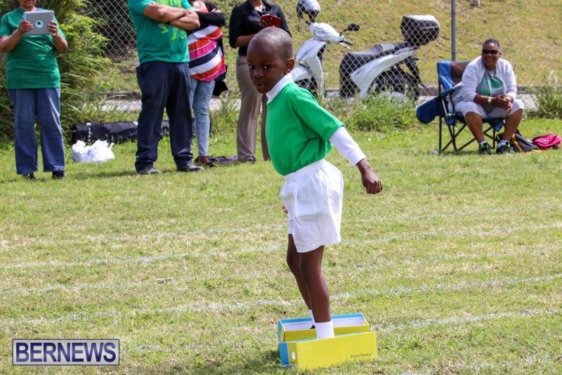 Prospect-Preschool-Sports-Day-Bermuda-May-1-2015-80