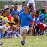 Prospect Preschool Sports Day Bermuda, May 1 2015-81