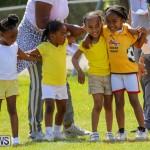 Prospect Preschool Sports Day Bermuda, May 1 2015-9