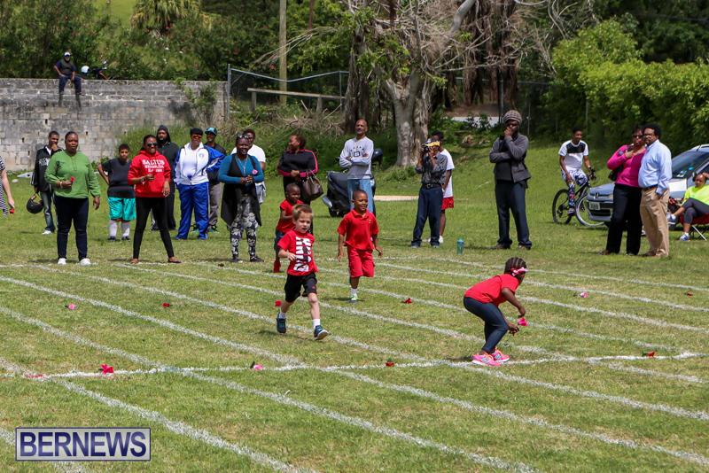 Prospect-Preschool-Sports-Day-Bermuda-May-1-2015-98
