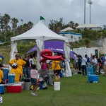 Relay For Life 2015-05-30 (15)