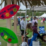 Relay For Life 2015-05-30 (20)