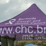 Relay For Life 2015-05-30 (36)