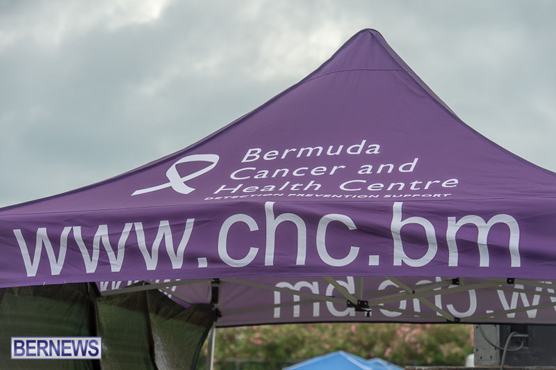 Relay-For-Life-2015-05-30-36