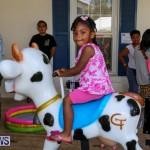 Somersfield Academy Fair Bermuda, May 16 2015-1