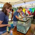 Somersfield Academy Fair Bermuda, May 16 2015-29